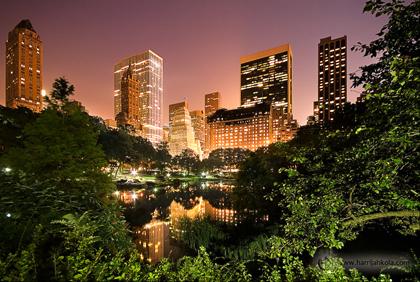 Central-Park-Proposal