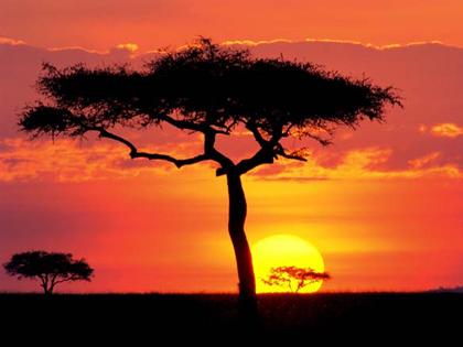 Masai-Mara-Proposal